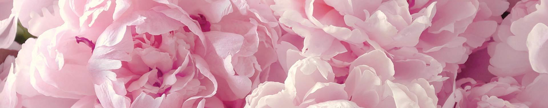 White Musk® Flora