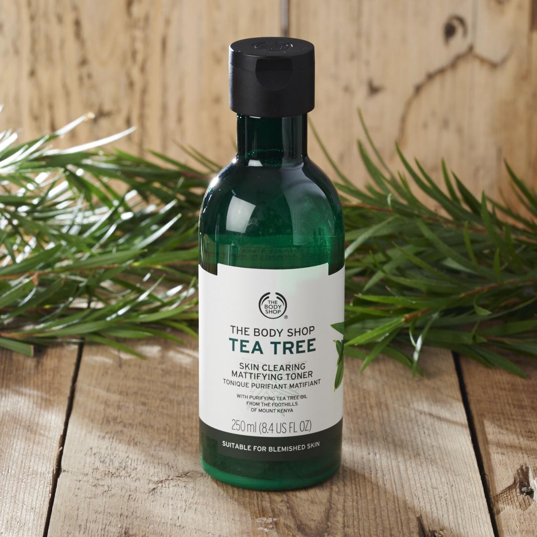 Jerawat Cepat Masak Karena Tea Tree Oil